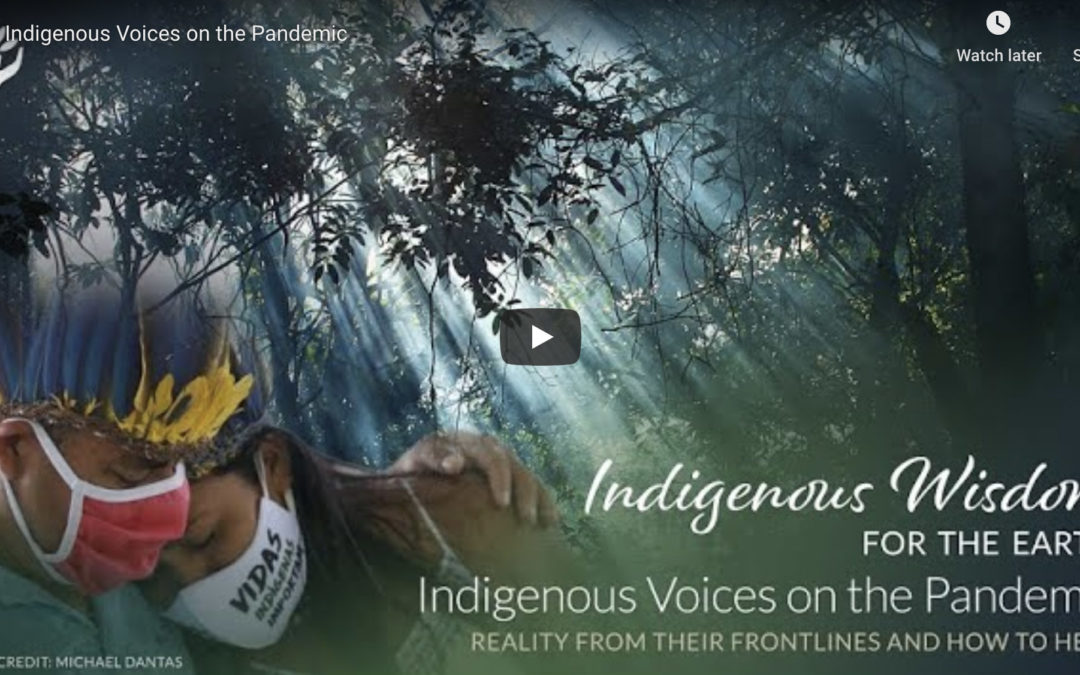 Tree Sisters Webinar: Indigenous Voices on the Pandemic